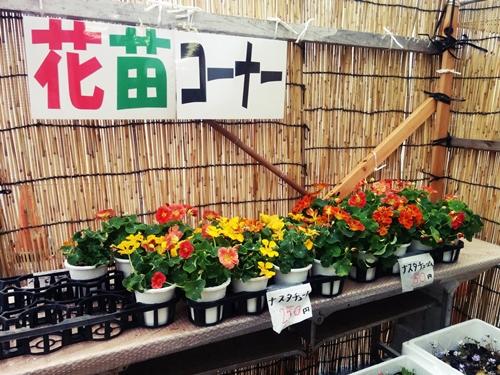flower_corner