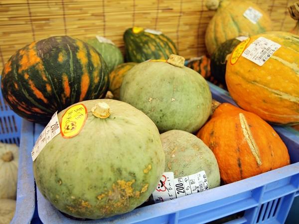 食べて美味しいホクホクのかぼちゃも販売しています。