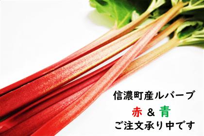 rhubarb_thumb3