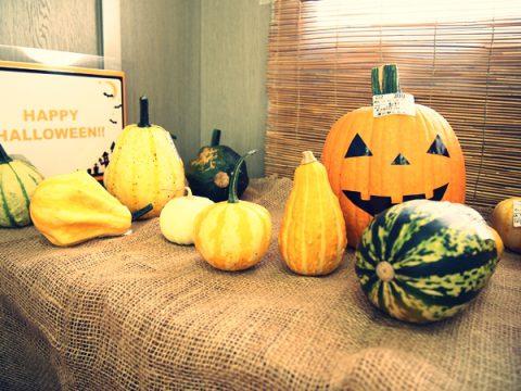 こちらの小さなかぼちゃ達は「飾りかぼちゃ」や「おもちゃかぼちゃ」と呼ばれています。食すには向かないようですが、ハロウィンの装飾にはピッタリです。